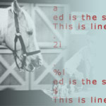 ed text editor and mr. ed